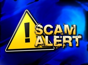 scam_alert_mgn