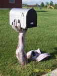Mail Box 17